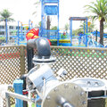 Seaworld waterplay uv sterilizer